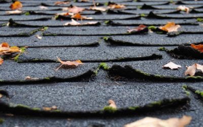 4 Signs That it's Time for a New Roof